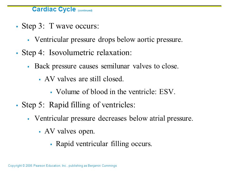 Cardiac Cycle (continued)