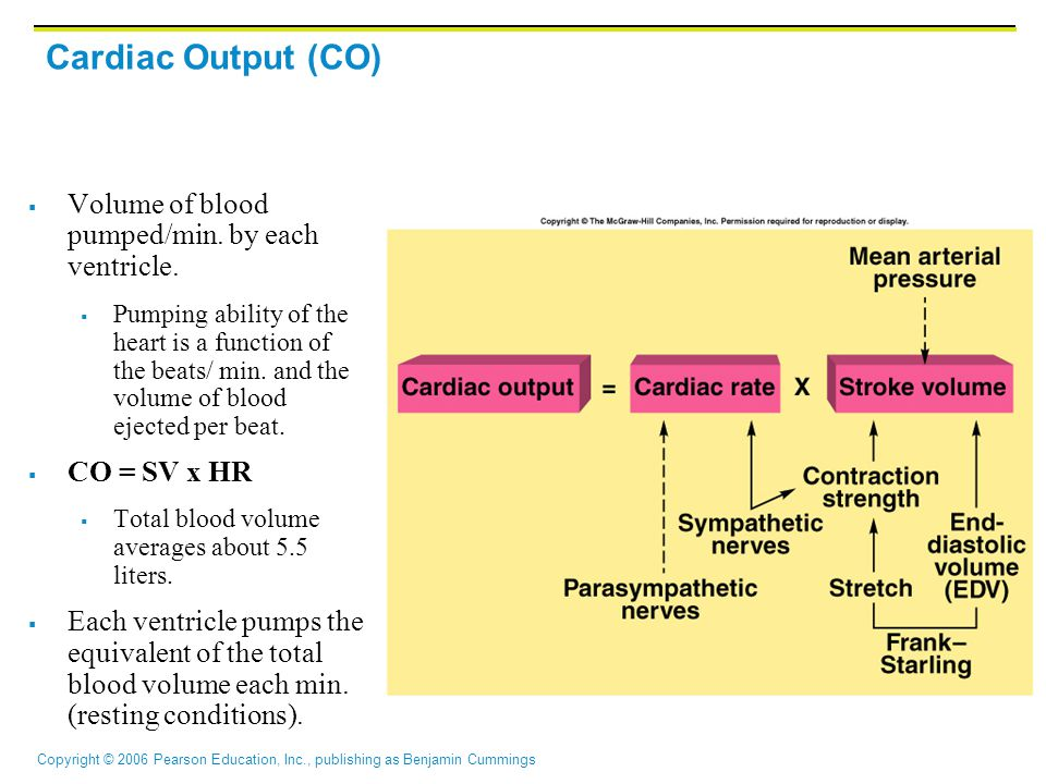Cardiac Output (CO) Volume of blood pumped/min. by each ventricle.