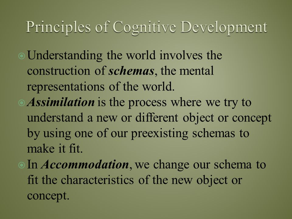 Principles of Cognitive Development