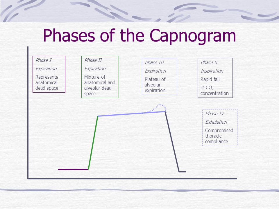 Phases of the Capnogram