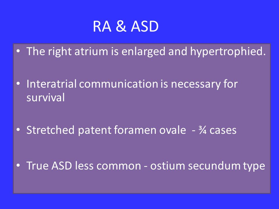 RA & ASD The right atrium is enlarged and hypertrophied.