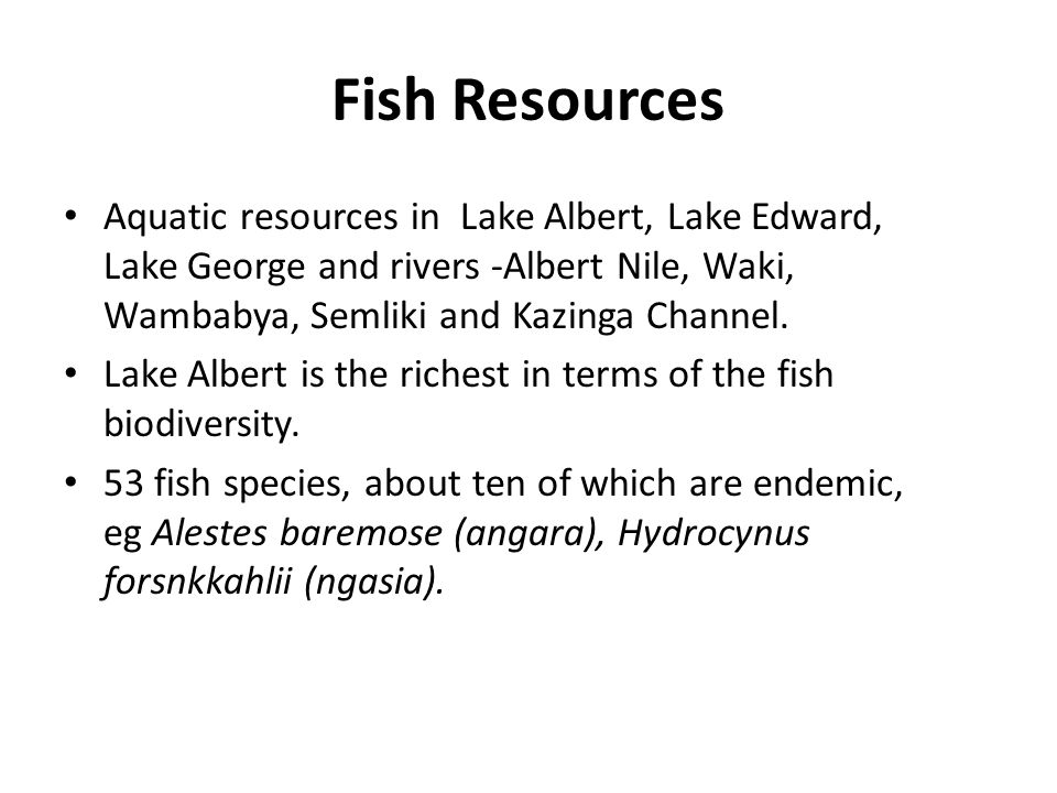 Fish Resources Aquatic resources in Lake Albert, Lake Edward, Lake George and rivers -Albert Nile, Waki, Wambabya, Semliki and Kazinga Channel.