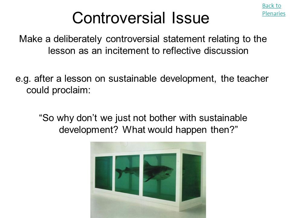 Back to Plenaries Controversial Issue. Make a deliberately controversial statement relating to the lesson as an incitement to reflective discussion.