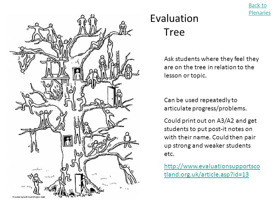Back to Plenaries Evaluation Tree. Ask students where they feel they are on the tree in relation to the lesson or topic.