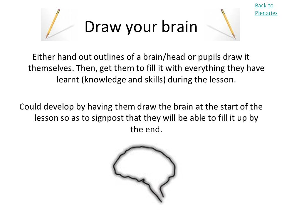 Back to Plenaries Draw your brain.