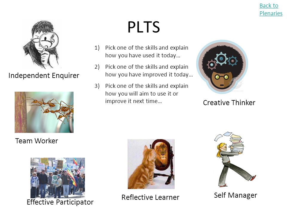 PLTS Independent Enquirer Creative Thinker Team Worker Self Manager