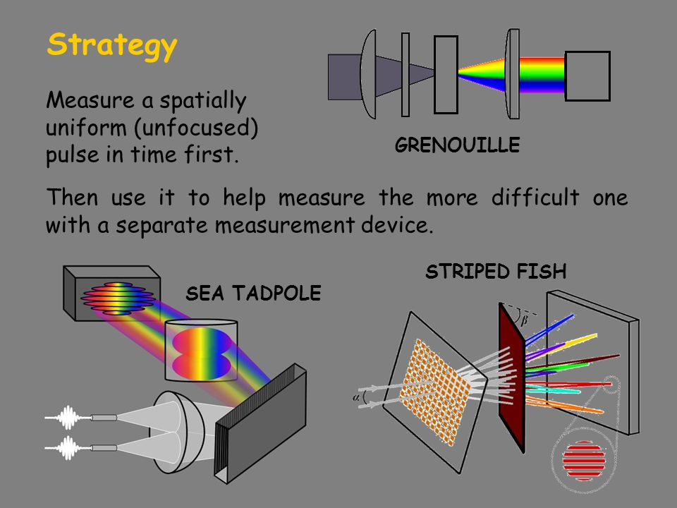 Strategy Measure a spatially uniform (unfocused) pulse in time first.