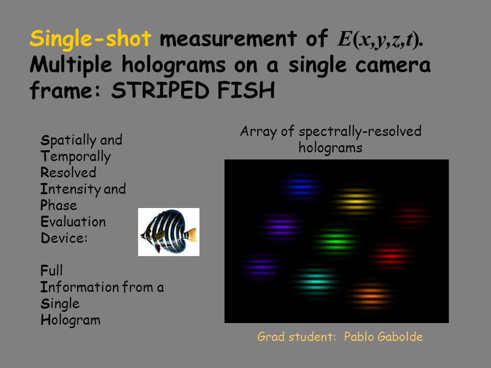Array of spectrally-resolved holograms