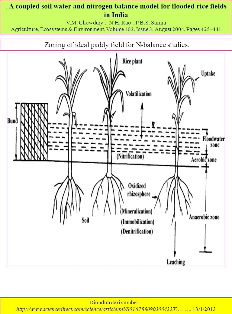 Zoning of ideal paddy field for N-balance studies.