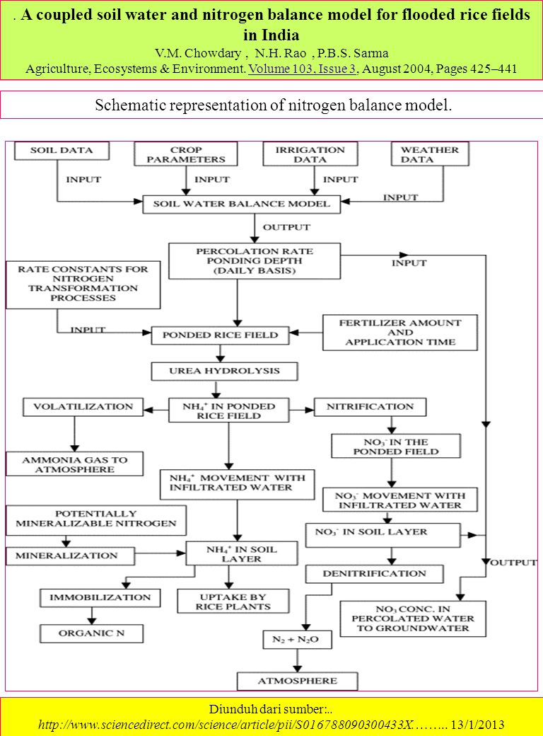 Schematic representation of nitrogen balance model.