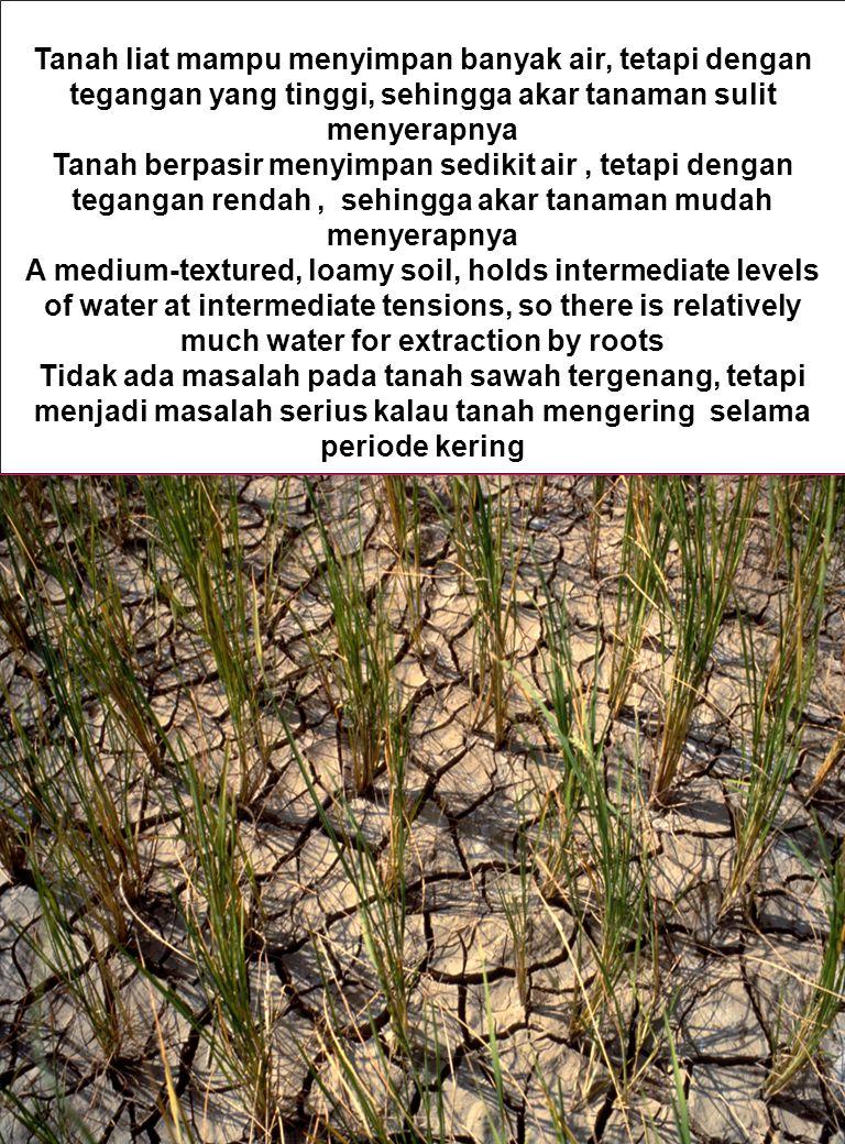 Tanah liat mampu menyimpan banyak air, tetapi dengan tegangan yang tinggi, sehingga akar tanaman sulit menyerapnya