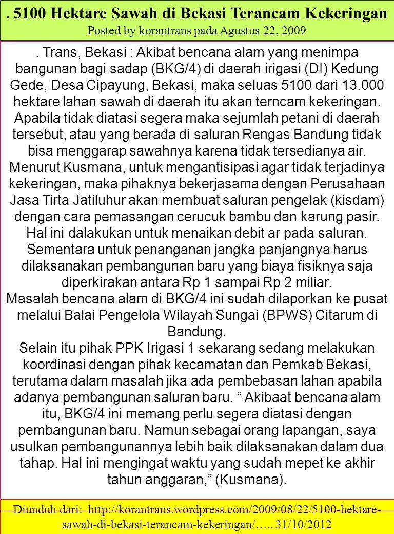. 5100 Hektare Sawah di Bekasi Terancam Kekeringan