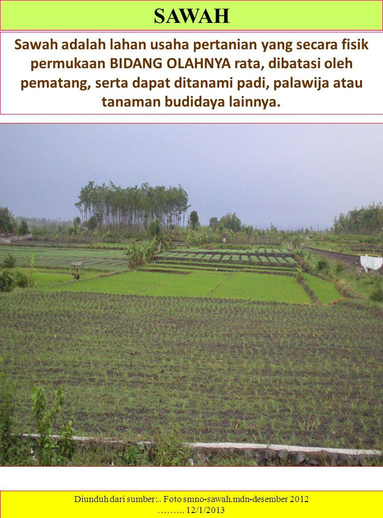 Diunduh dari sumber:.. Foto smno-sawah.mdn-desember 2012