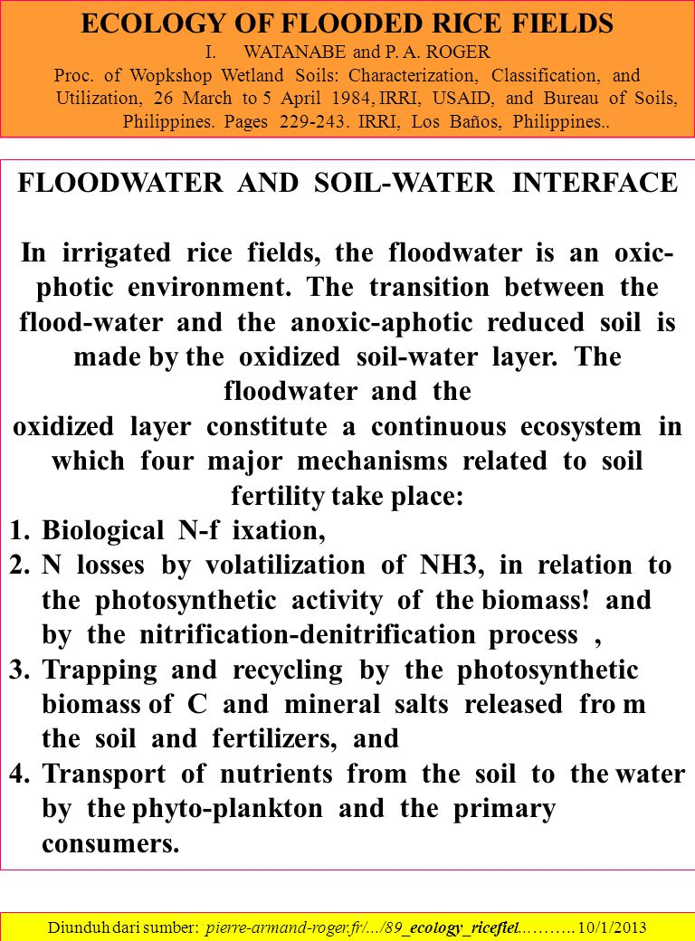 ECOLOGY OF FLOODED RICE FIELDS FLOODWATER AND SOIL-WATER INTERFACE