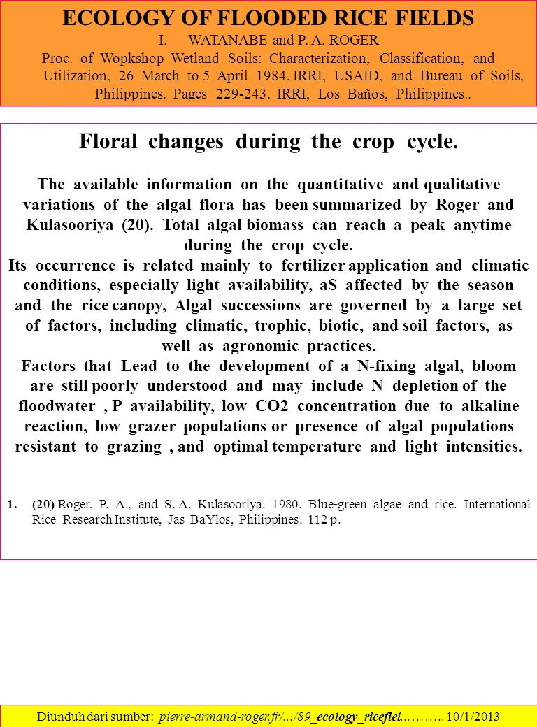 ECOLOGY OF FLOODED RICE FIELDS Floral changes during the crop cycle.