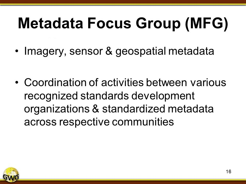 Metadata Focus Group (MFG)