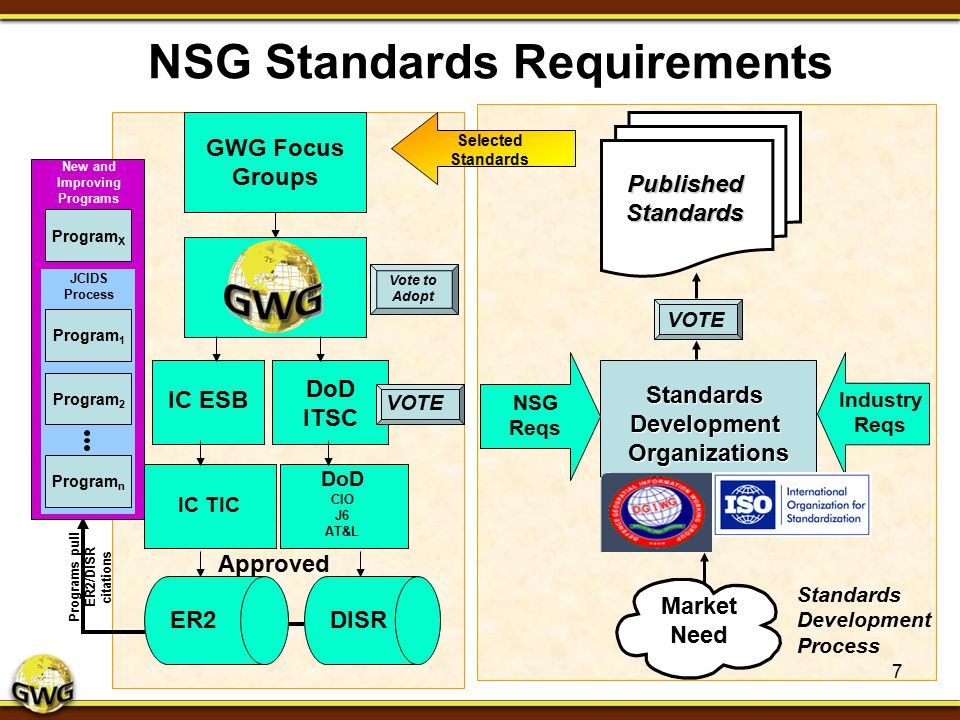 NSG Standards Requirements
