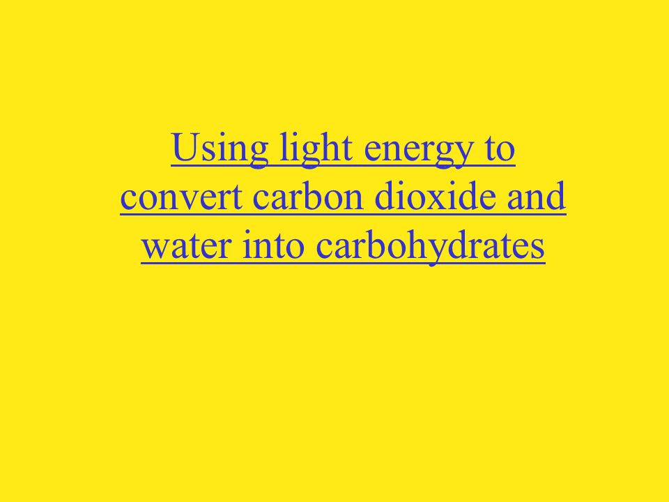 Using light energy to convert carbon dioxide and water into carbohydrates