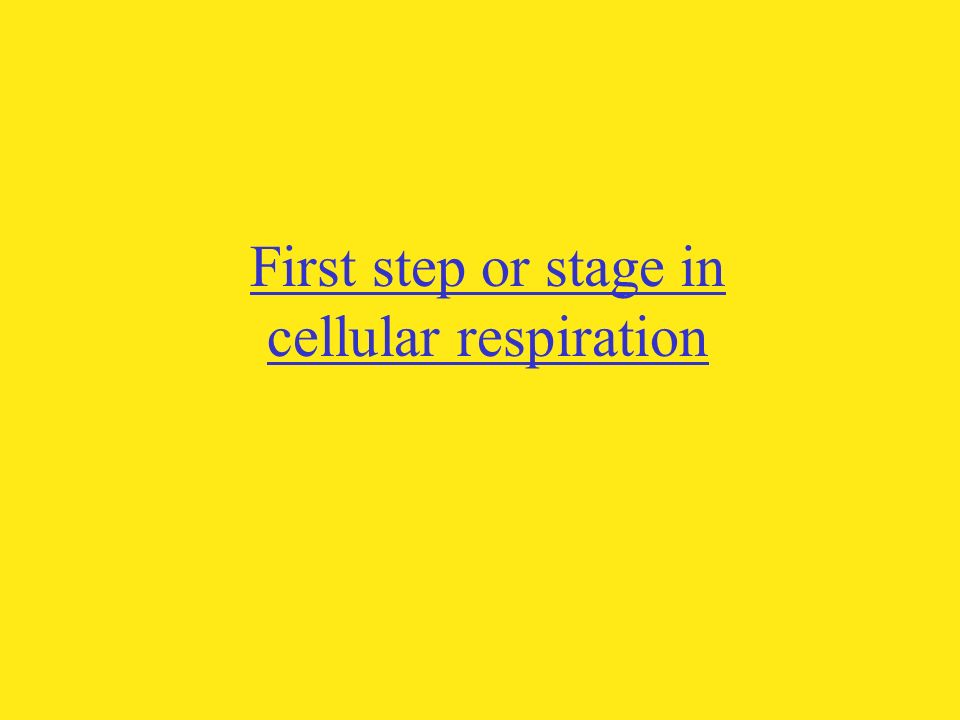First step or stage in cellular respiration