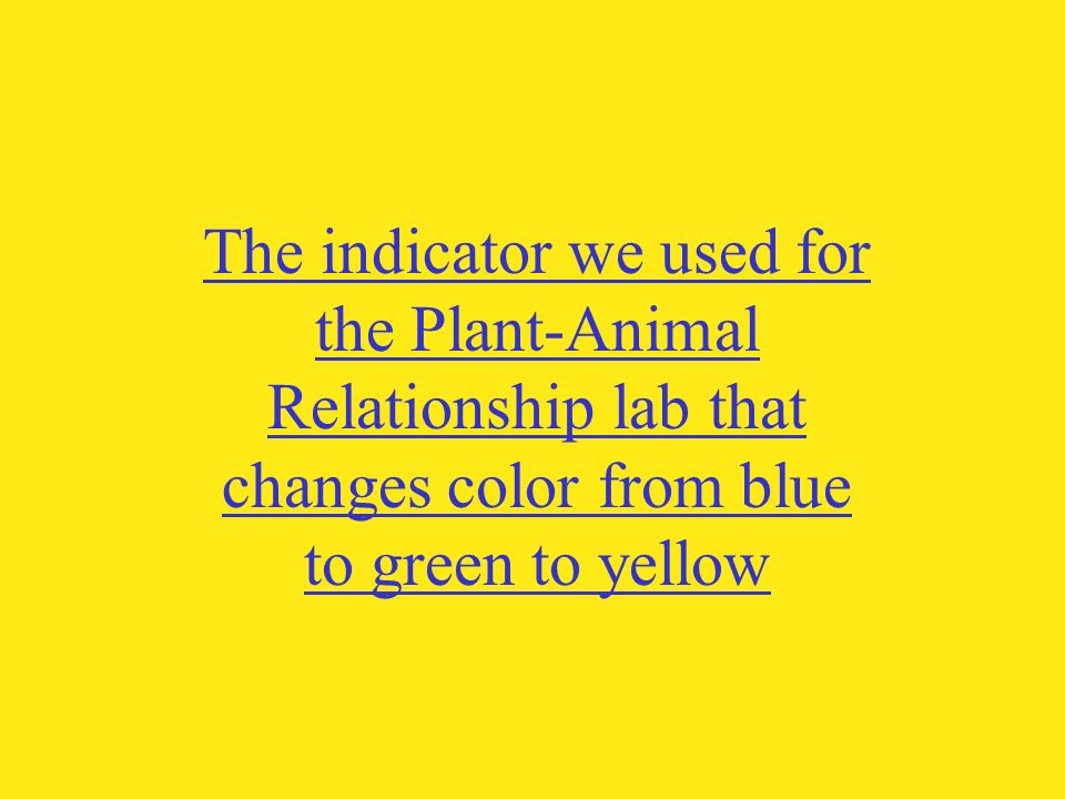 The indicator we used for the Plant-Animal Relationship lab that changes color from blue to green to yellow