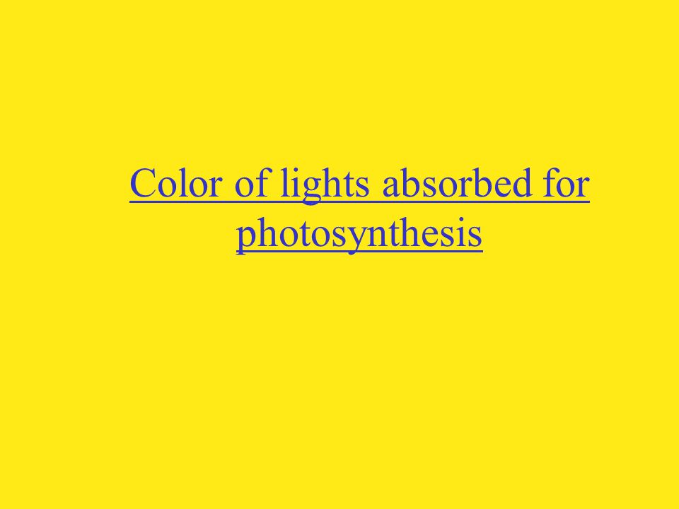 Color of lights absorbed for photosynthesis