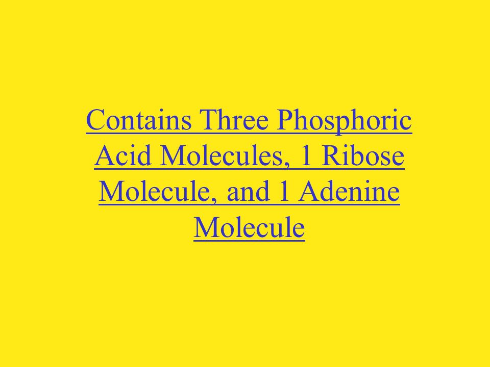 Contains Three Phosphoric Acid Molecules, 1 Ribose Molecule, and 1 Adenine Molecule