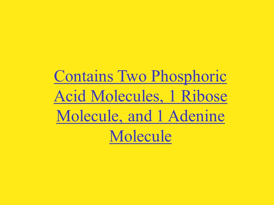 Contains Two Phosphoric Acid Molecules, 1 Ribose Molecule, and 1 Adenine Molecule