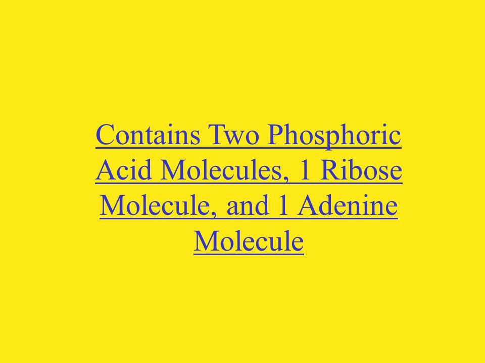 Contains Two Phosphoric Acid Molecules, 1 Ribose Molecule, and 1 Adenine Molecule