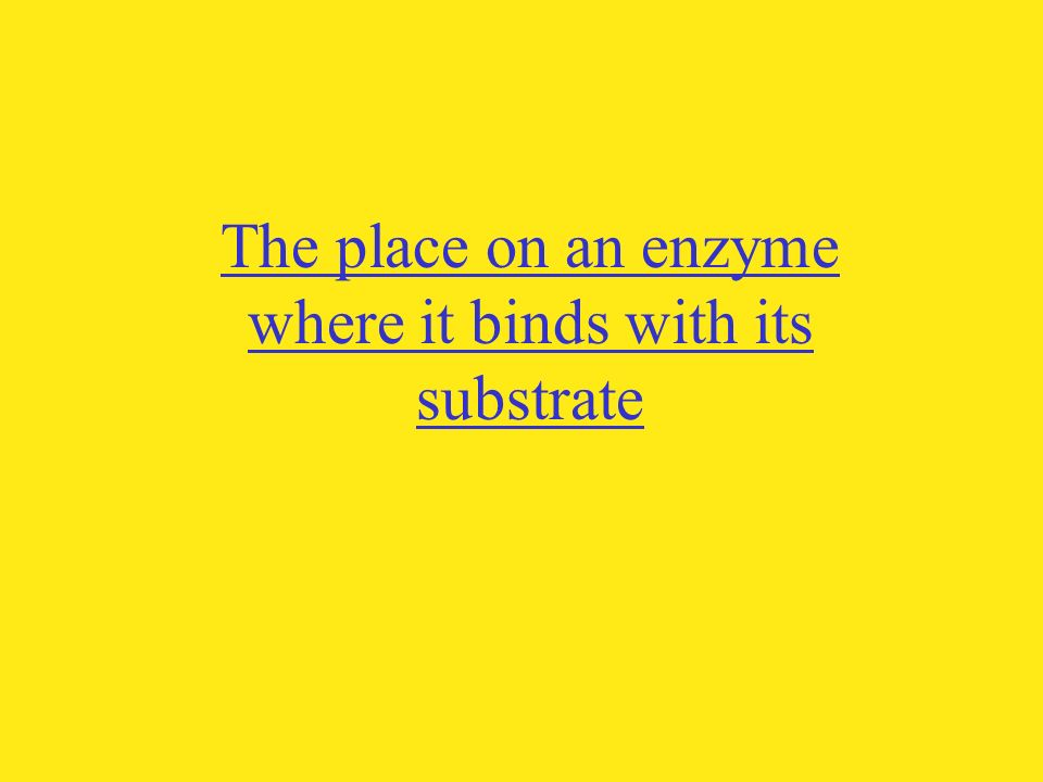 The place on an enzyme where it binds with its substrate