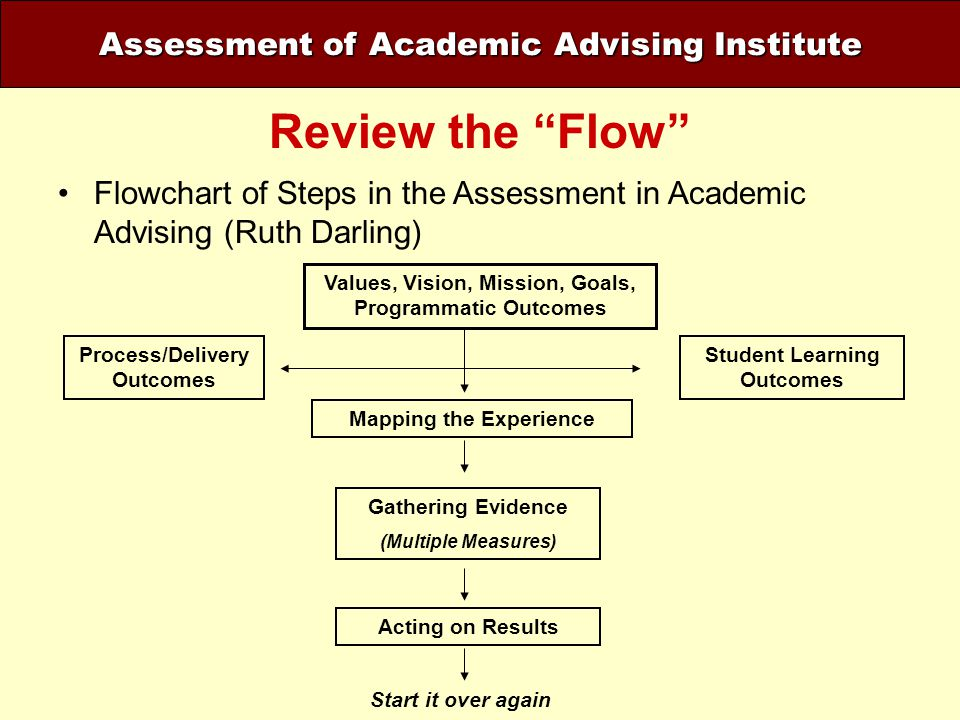Review the Flow Assessment of Academic Advising Institute