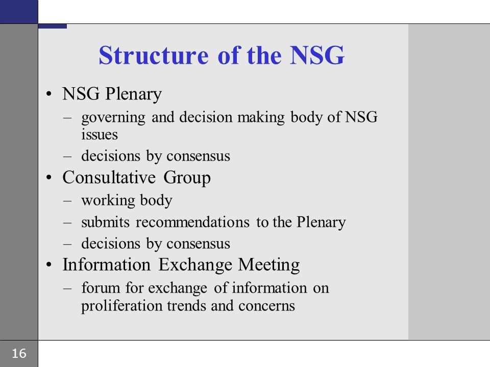 Structure of the NSG NSG Plenary Consultative Group