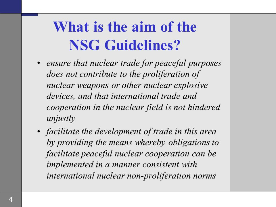 What is the aim of the NSG Guidelines