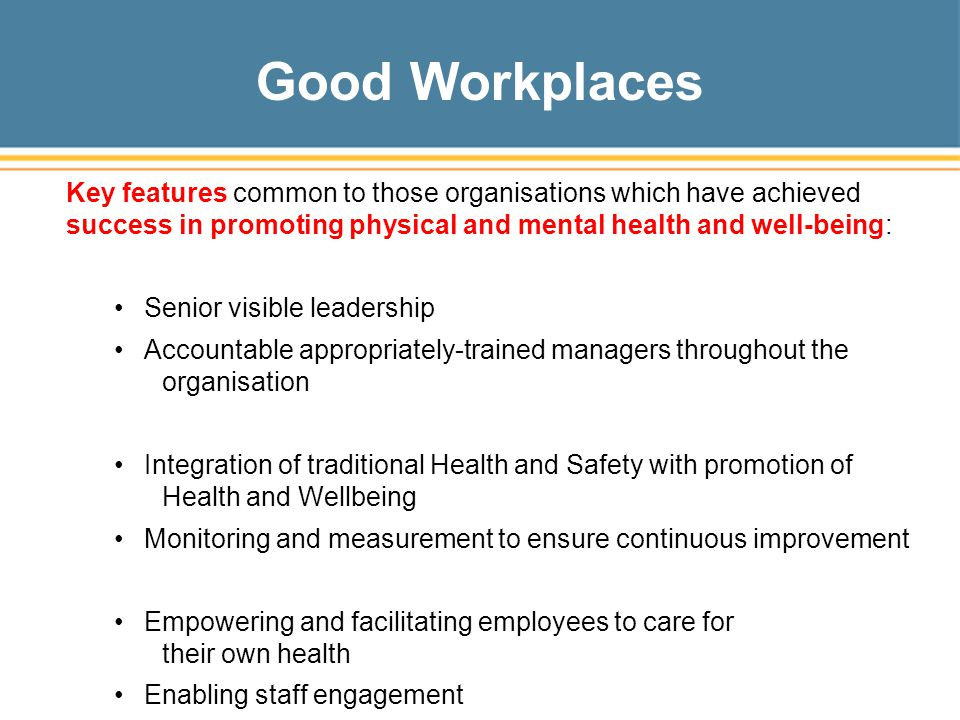 Good Workplaces Key features common to those organisations which have achieved success in promoting physical and mental health and well-being: