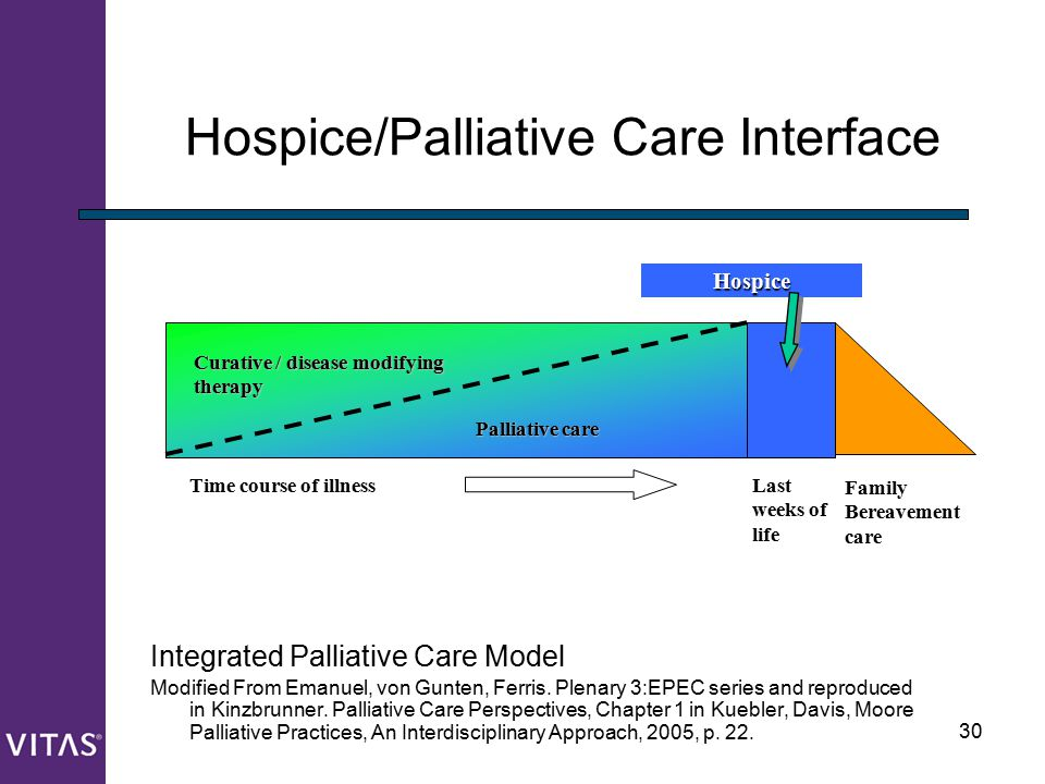 Hospice/Palliative Care Interface