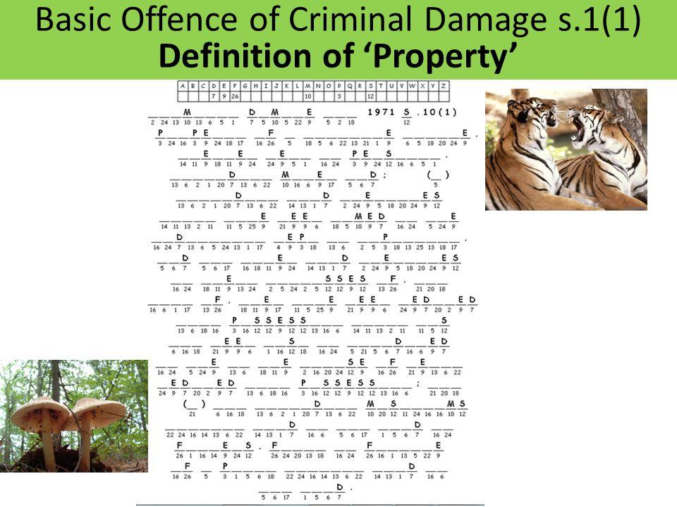 Basic Offence of Criminal Damage s.1(1) Definition of 'Property'