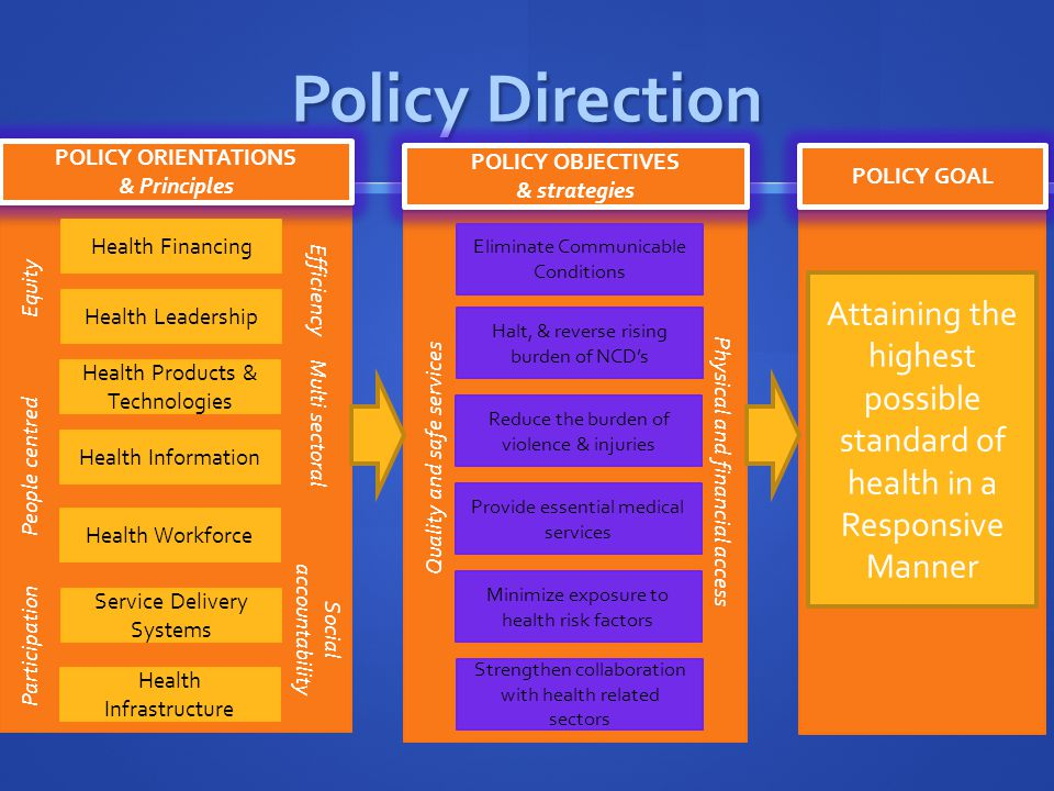 Policy Direction POLICY ORIENTATIONS. & Principles. POLICY OBJECTIVES. & strategies. POLICY GOAL.