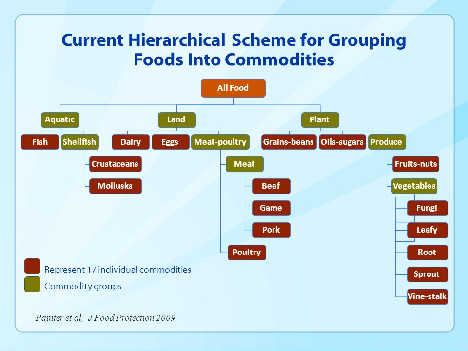 Current Hierarchical Scheme for Grouping Foods Into Commodities