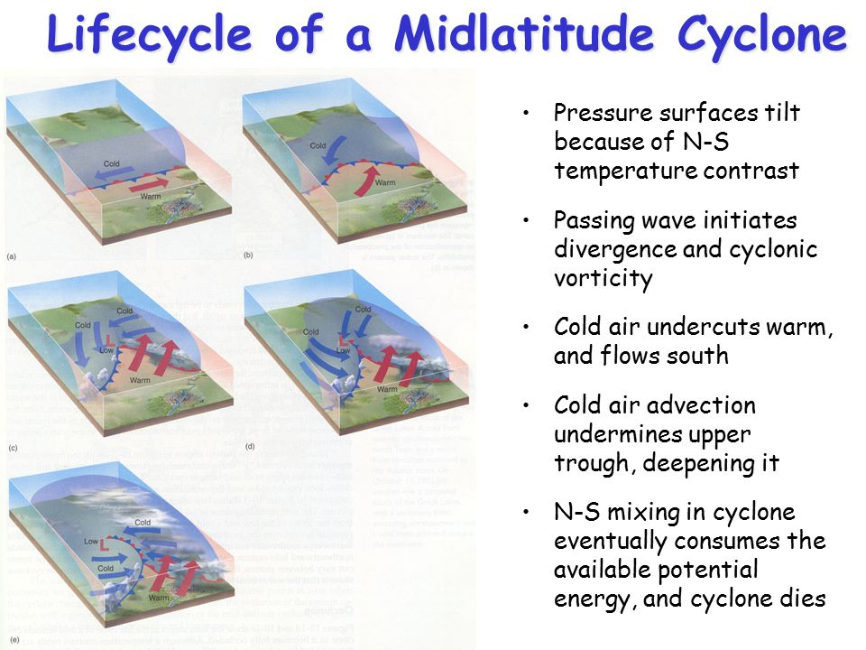 Lifecycle of a Midlatitude Cyclone
