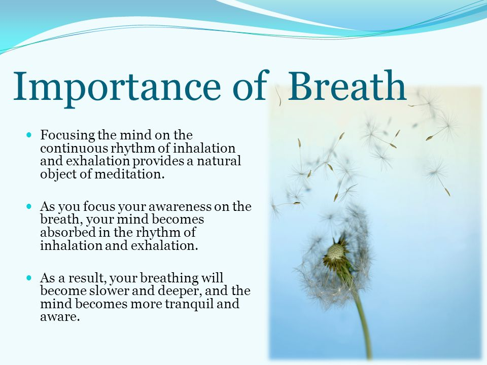 Importance of Breath Focusing the mind on the continuous rhythm of inhalation and exhalation provides a natural object of meditation.