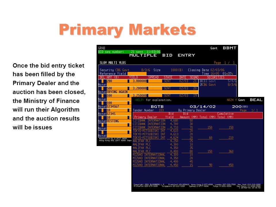 Primary Markets Once the bid entry ticket has been filled by the
