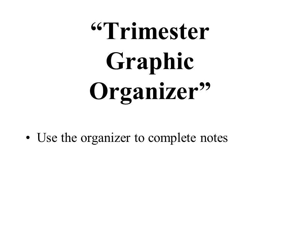 Trimester Graphic Organizer