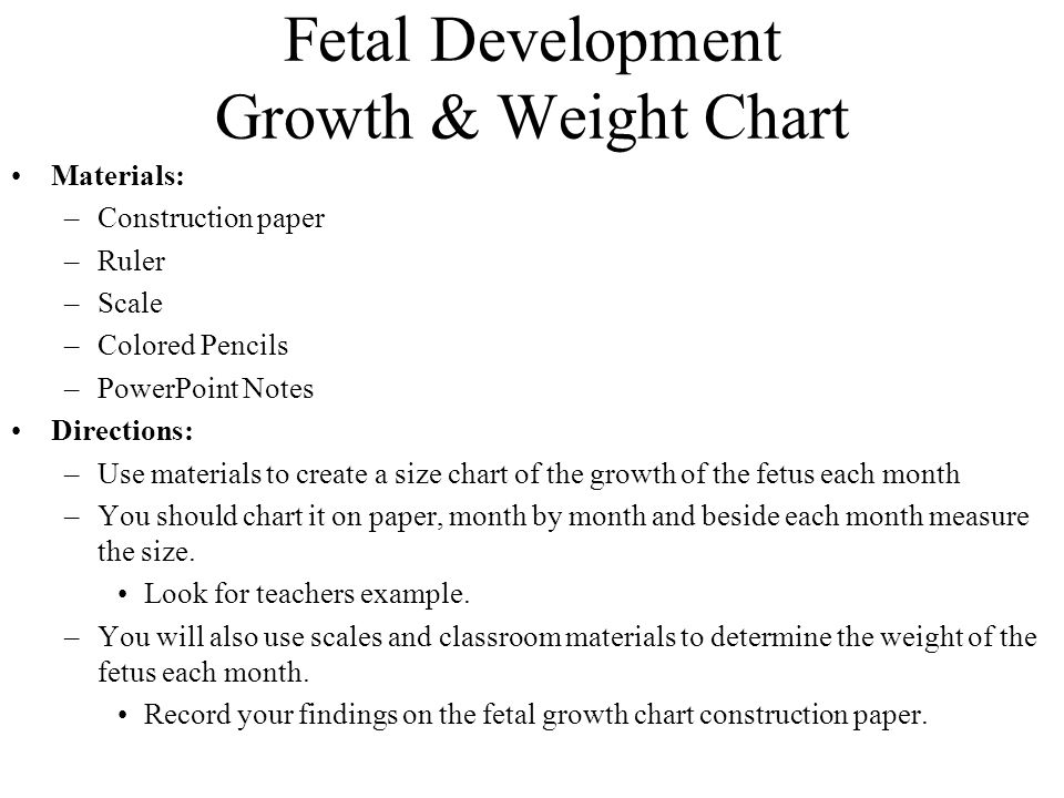 Fetal Development Weight Chart Rebellions