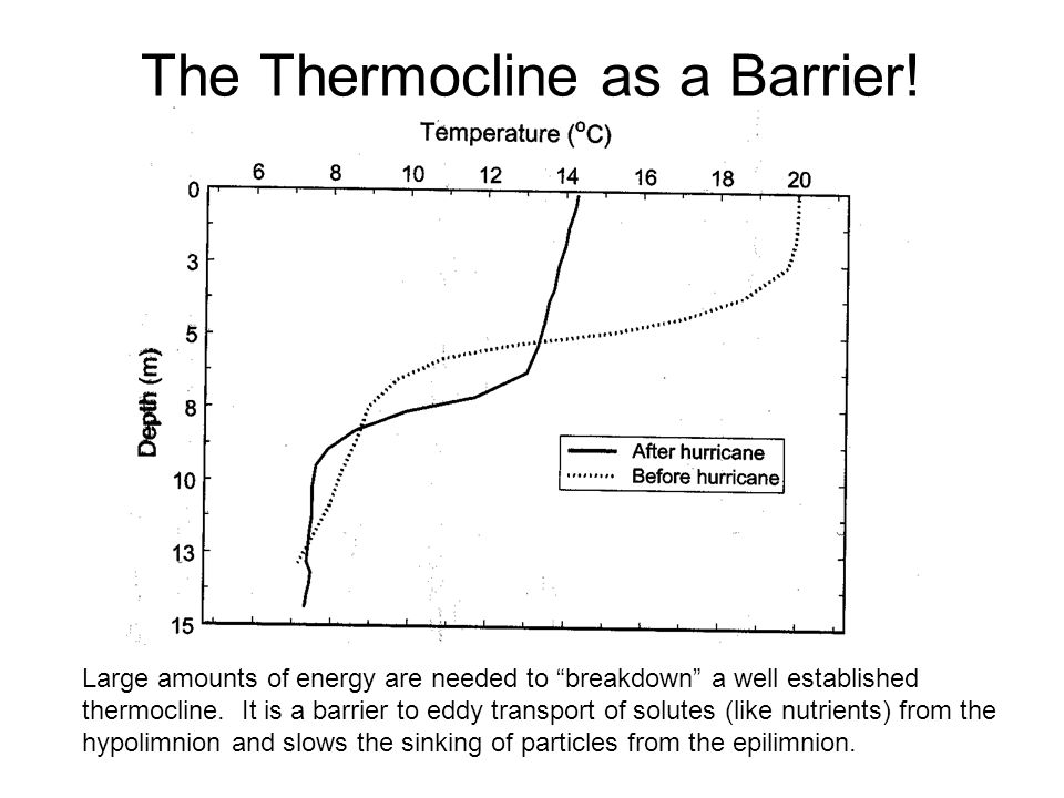 The Thermocline as a Barrier!
