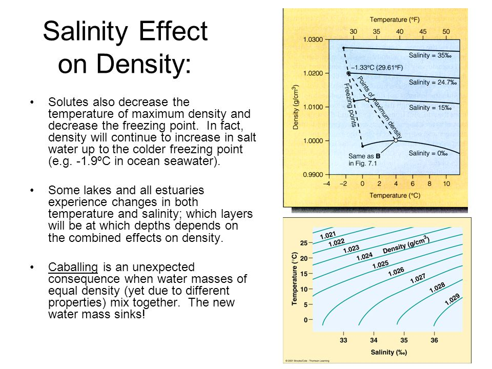 Salinity Effect on Density:
