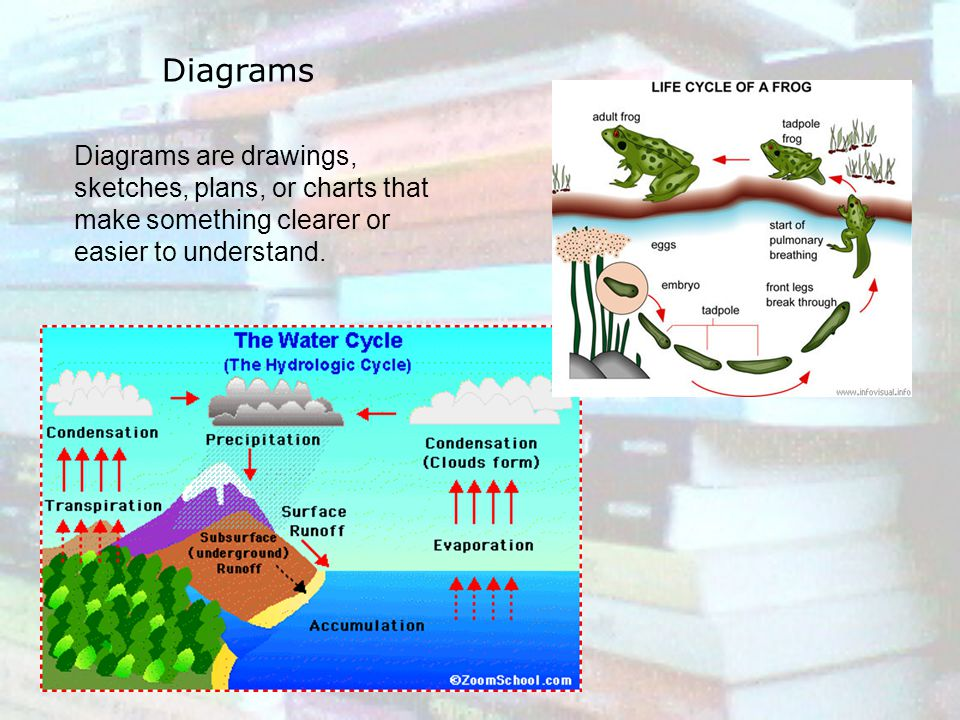 Diagrams Diagrams are drawings, sketches, plans, or charts that make something clearer or easier to understand.