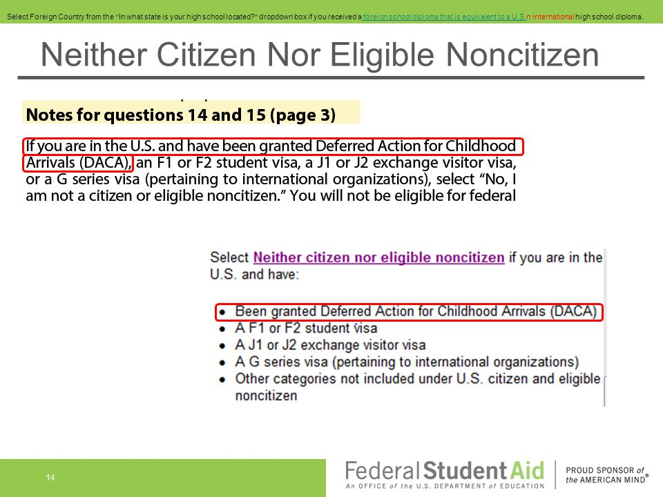 Neither Citizen Nor Eligible Noncitizen