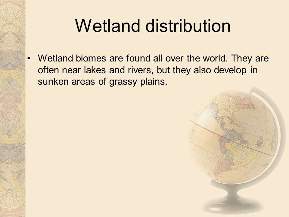 Wetland distribution