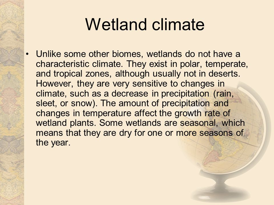 Wetland climate