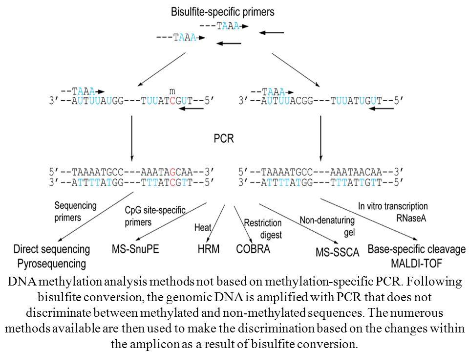 DNA methylation analysis methods not based on methylation-specific PCR