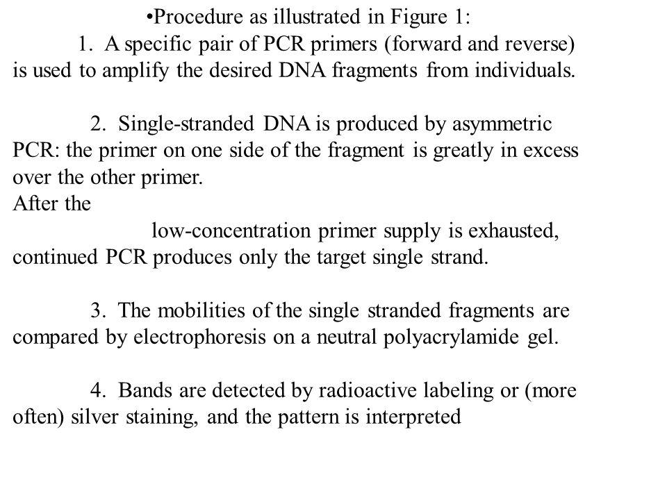 Procedure as illustrated in Figure 1: